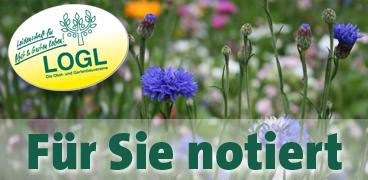 NaturErlebnisWoche 2017