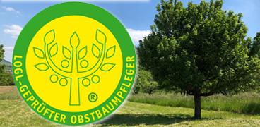 LOGL-Geprüfter Obstbaumpfleger®